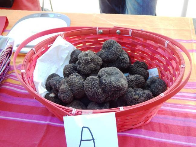 Panier de truffes