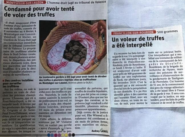 Voleurs de truffes interpeles en fevrier 2020